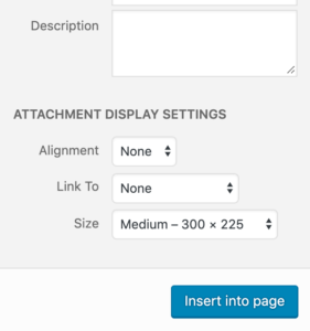 Media Attachment Display Settings